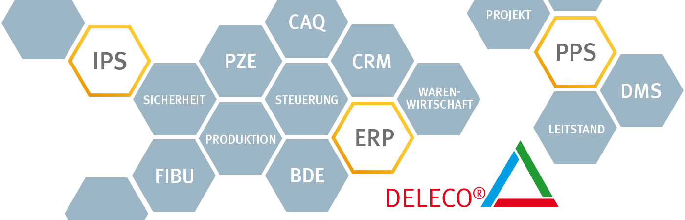 ERP-Software DELECO
